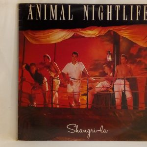 Animal Nightlife: Shangri-La | Venta vinilos de Acid Jazz - Chile